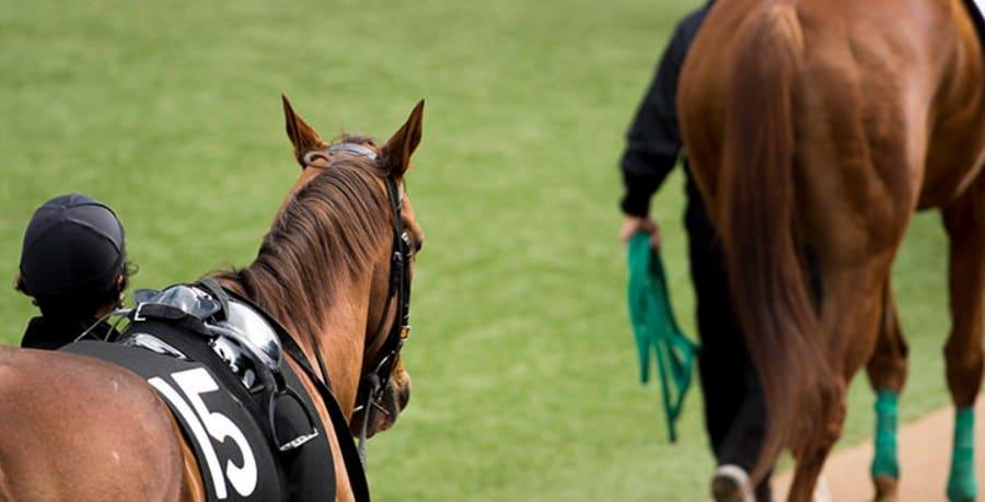 馬単のメリットとデメリット